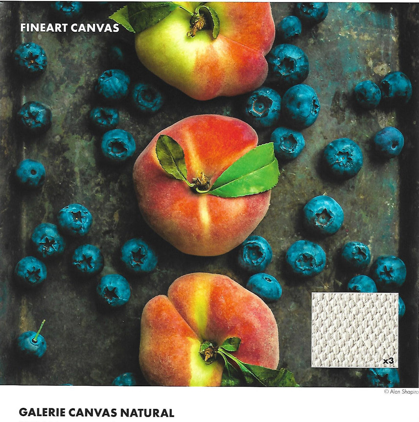 Canvas Natural 340gsm